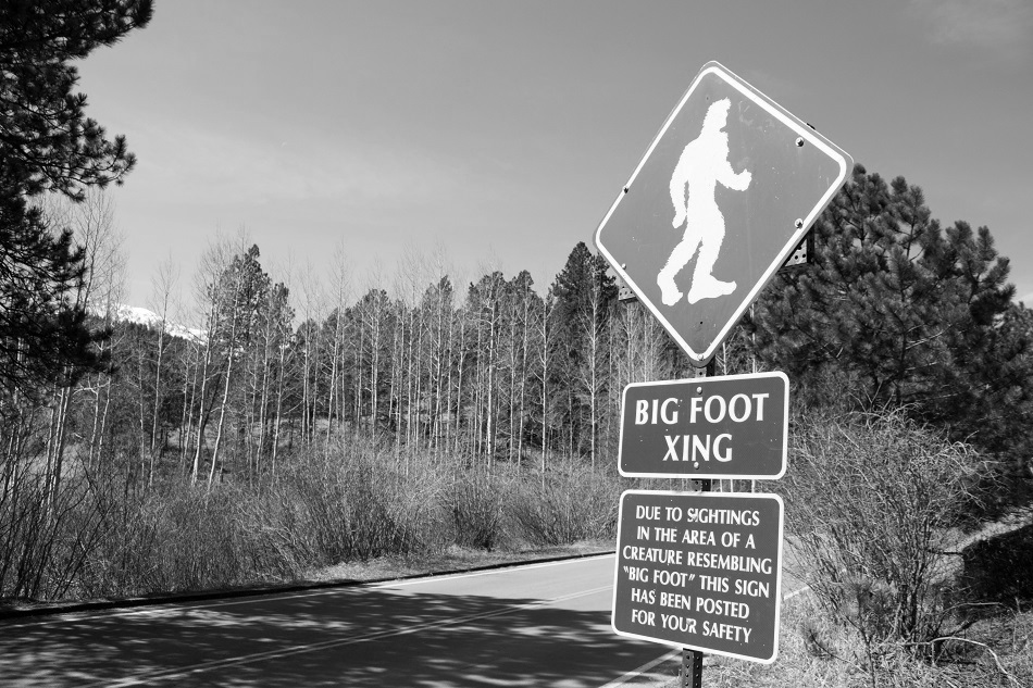 sales closers and bigfoot are sales myths